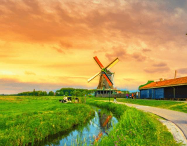 Vendors in Noord-Brabant